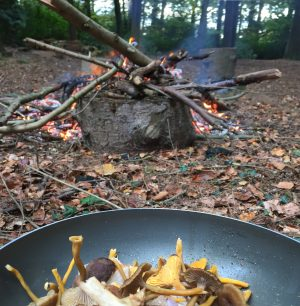 cooking wild mushrooms outdoors on a fire